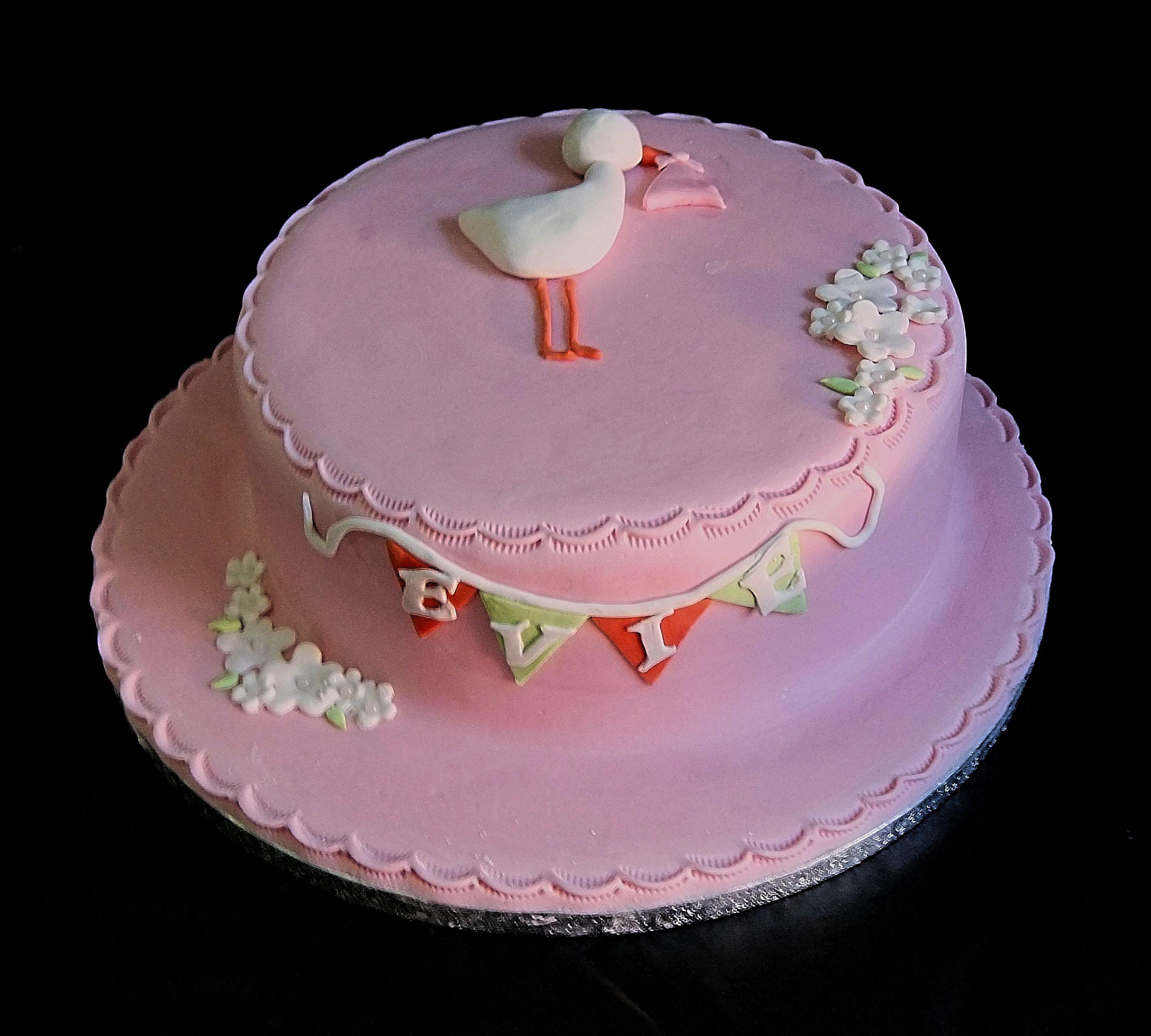 Baby Stork Cake Mannings Bakery
